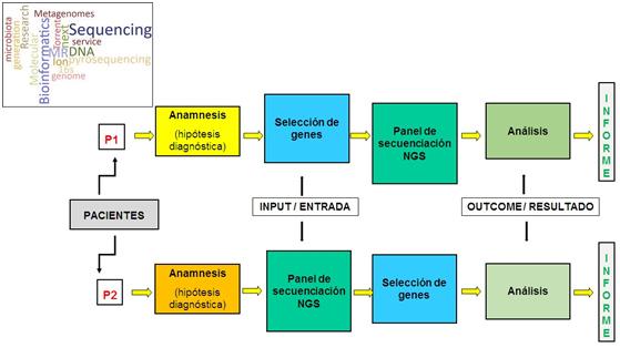 apiclinics4